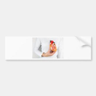 Pegatina Para Coche La mano lleva a cabo el modelo humano del corazón