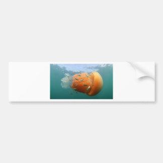 Pegatina Para Coche La medusa del barril nada con la caballa