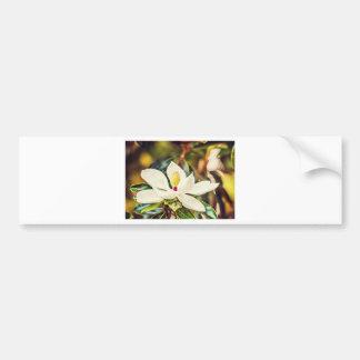 Pegatina Para Coche Magnolia en la floración