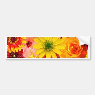 Pegatina Para Coche Orange flowers_ Gloria Sanchez