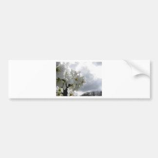 Pegatina Para Coche Peral floreciente contra el cielo nublado