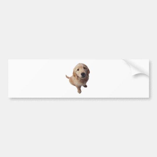 Pegatina Para Coche Perrito labrador