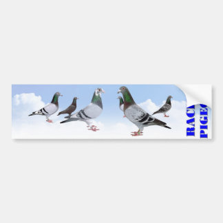 Pegatina Para Coche Racing Pigeons