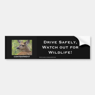 Pegatina Para Coche Regalos de motivación de los ciervos