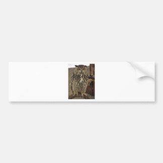Pegatina Para Coche Retrato del búho largo-espigado. Otus del Asio,