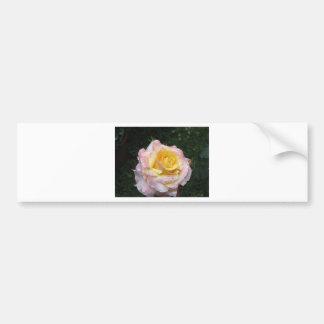 Pegatina Para Coche Sola flor del rosa amarillo con las gotitas de