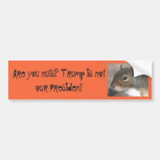 Pegatina Para Coche ¡Squirrelly es usted Nuts! El triunfo no es
