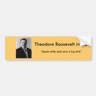 Pegatina Para Coche Theodore Roosevelt para el presidente