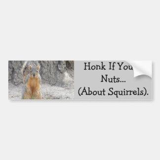 Pegatina Para Coche Toque la bocina si usted es Nuts… sobre ardillas