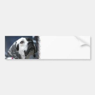 Pegatina para el parachoques blanco y negro del in etiqueta de parachoque