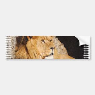 Pegatina para el parachoques de la foto del león etiqueta de parachoque