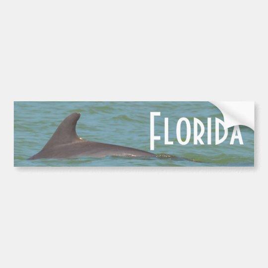 Pegatina para el parachoques del delfín de la