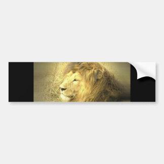 Pegatina para el parachoques del orgullo del león pegatina de parachoque