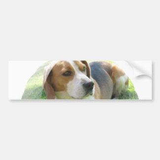Pegatina para el parachoques del perro de caza del etiqueta de parachoque