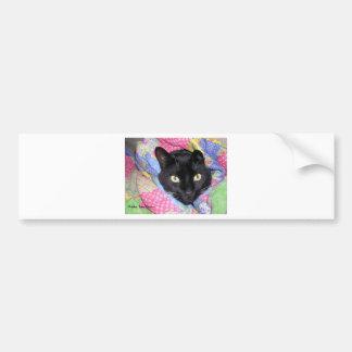 Pegatina para el parachoques: Gato divertido