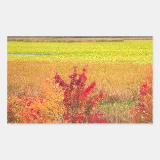 Pegatina Rectangular Árboles del otoño en los grandes prados