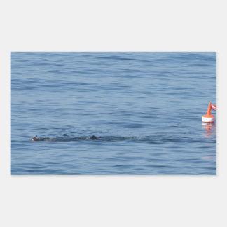 Pegatina Rectangular Buceador del mar en nadada del juego del equipo de