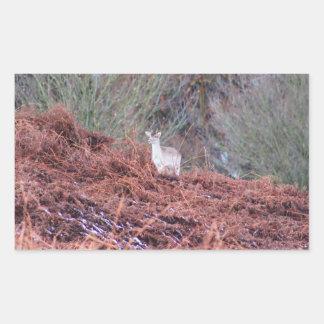 Pegatina Rectangular Ciervos en una colina