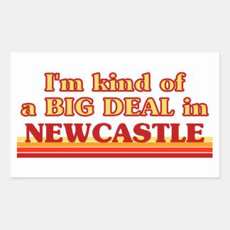 Pegatina Rectangular Clase de I´m de una gran cosa en Newcastle