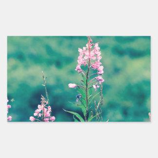 Pegatina Rectangular crossprocess del fireweed