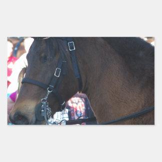 Pegatina Rectangular Gafas que llevan del caballo árabe de Brown oscuro
