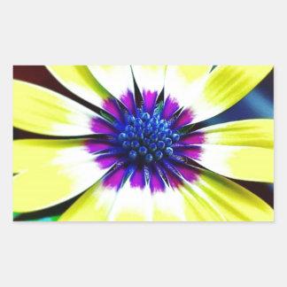 Pegatina Rectangular La belleza de amarillo y de la púrpura