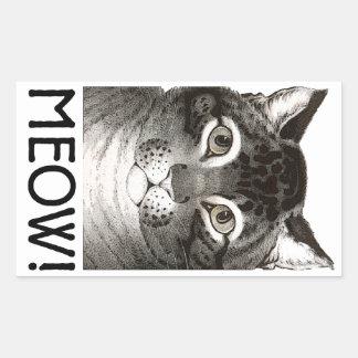 Pegatina Rectangular Los pegatinas del maullido de los gatos