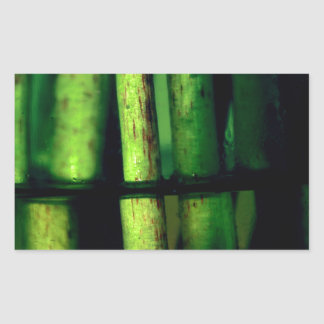 Pegatina Rectangular Macro verde