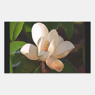 Pegatina Rectangular Magnolia meridional de Luisiana