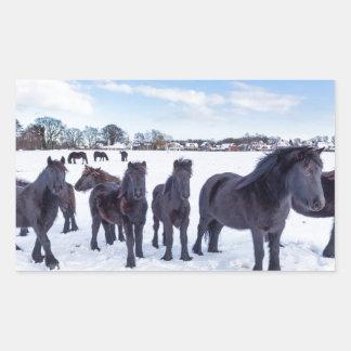 Pegatina Rectangular Manada de los caballos negros del frisian en nieve