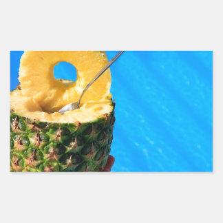 Pegatina Rectangular Mano que sostiene la piña fresca sobre piscina