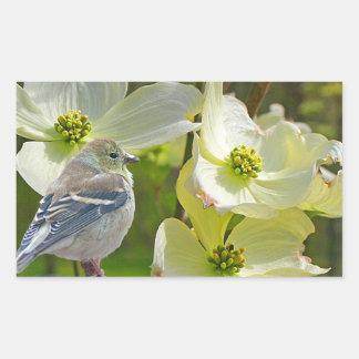 """Pegatina Rectangular """"Pájaro cantante del pinzón del visitante del"""
