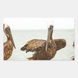 Pegatina Rectangular Pelícanos encaramados en los postes
