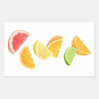 Pegatina Rectangular Rebanadas de la fruta cítrica que caen