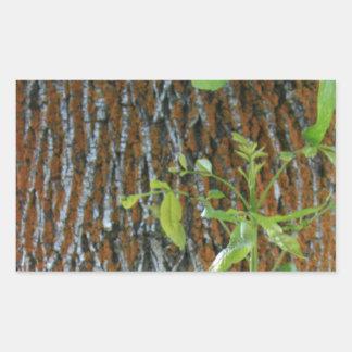 Pegatina Rectangular Tronco con follaje