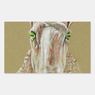 Pegatina Rectangular Un retrato de una oveja