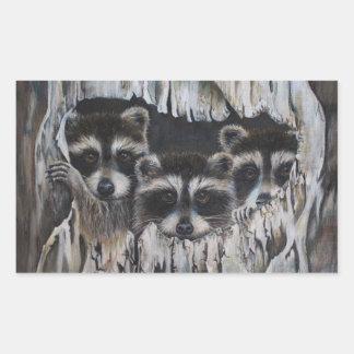 """Pegatina Rectangular """"Venga encendido en"""" tres mapaches en un árbol"""