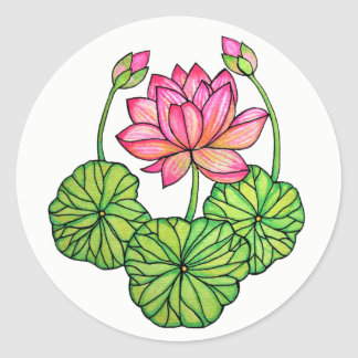 Pegatina Redonda Acuarela Lotus rosado con los brotes y las hojas