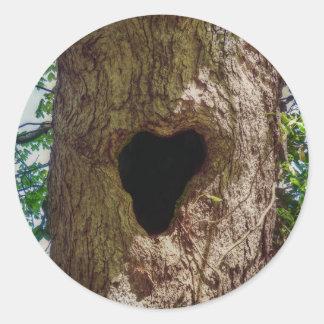 Pegatina Redonda Árbol del corazón