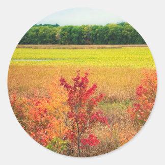 Pegatina Redonda Árboles del otoño en los grandes prados