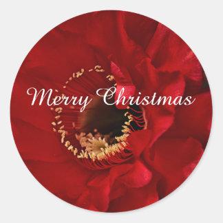 Pegatina Redonda Cactus de la luz de un fuego, Felices Navidad