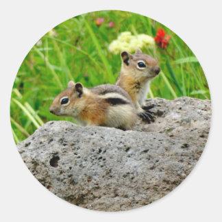 Pegatina Redonda Chipmunks y wildflowers