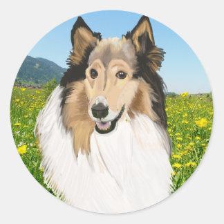 Pegatina Redonda Collie áspero, retrato de pelo largo del collie