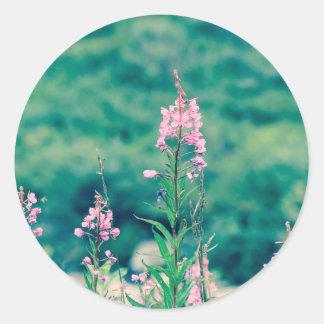 Pegatina Redonda crossprocess del fireweed