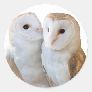 Pegatina Redonda dos amigos de los búhos