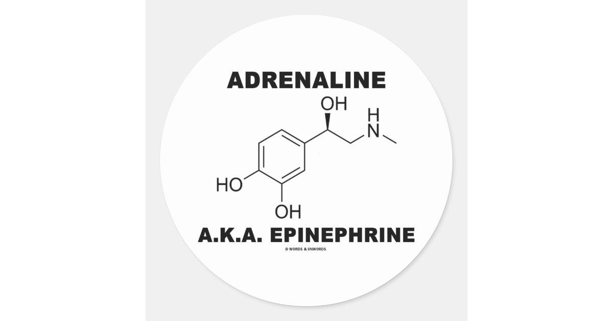 Pegatina Redonda Epinefrina De La Adrenalina A K A Química Zazzle Es