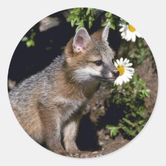 Pegatina Redonda Equipo Fox-joven gris