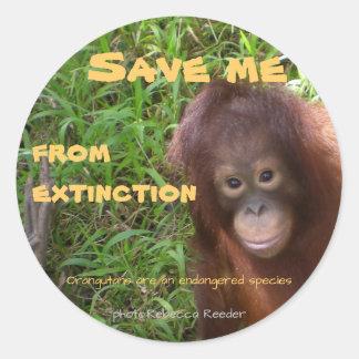 Pegatina Redonda Fauna en peligro del orangután de la especie