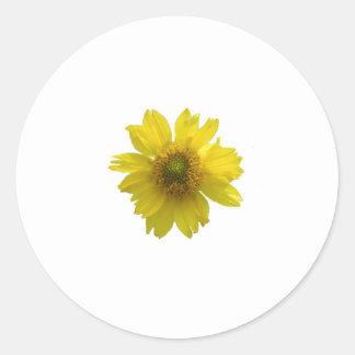 Pegatina Redonda Flor amarilla
