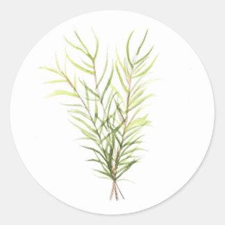 Pegatina Redonda Hierbas de Rosemary